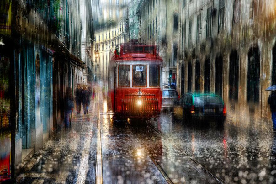 Rain Street Oil. Photo 8
