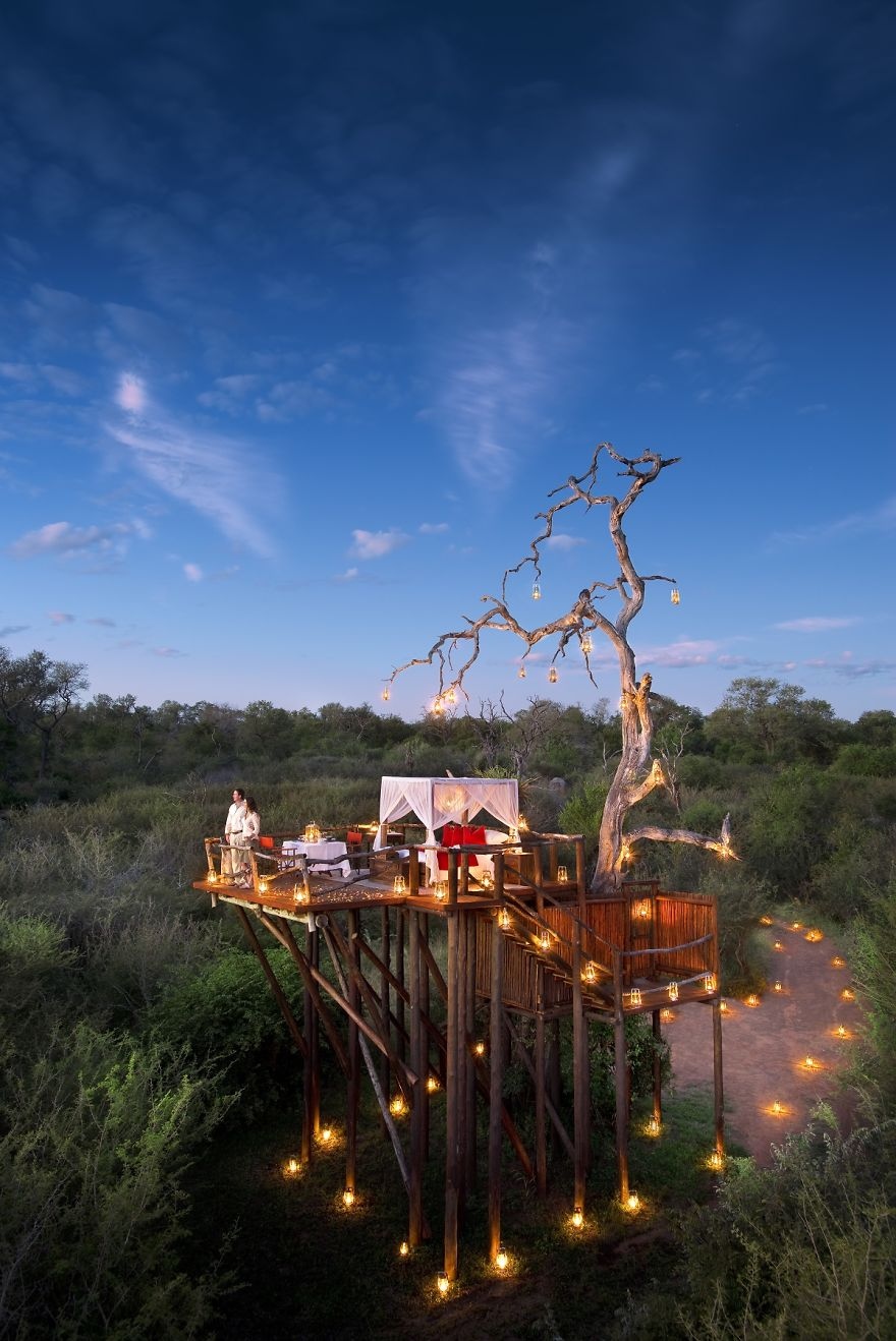 treehotel_in_south_africa_lion_sands_chalkley_treehouse_26