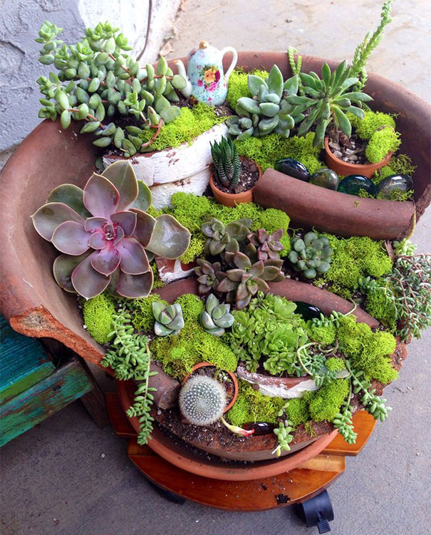 broken_pot_fairy_garden_15