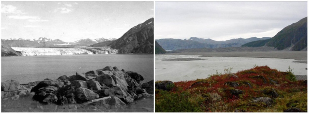 then_and_now_photos_dramatic_changes_on_earth_3