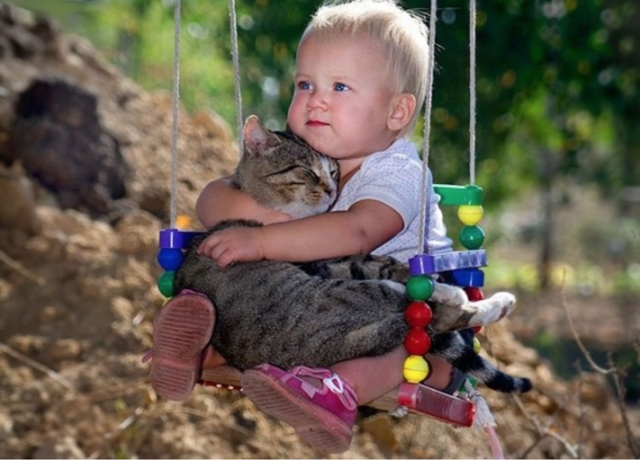 cats_dogs_and_children_10
