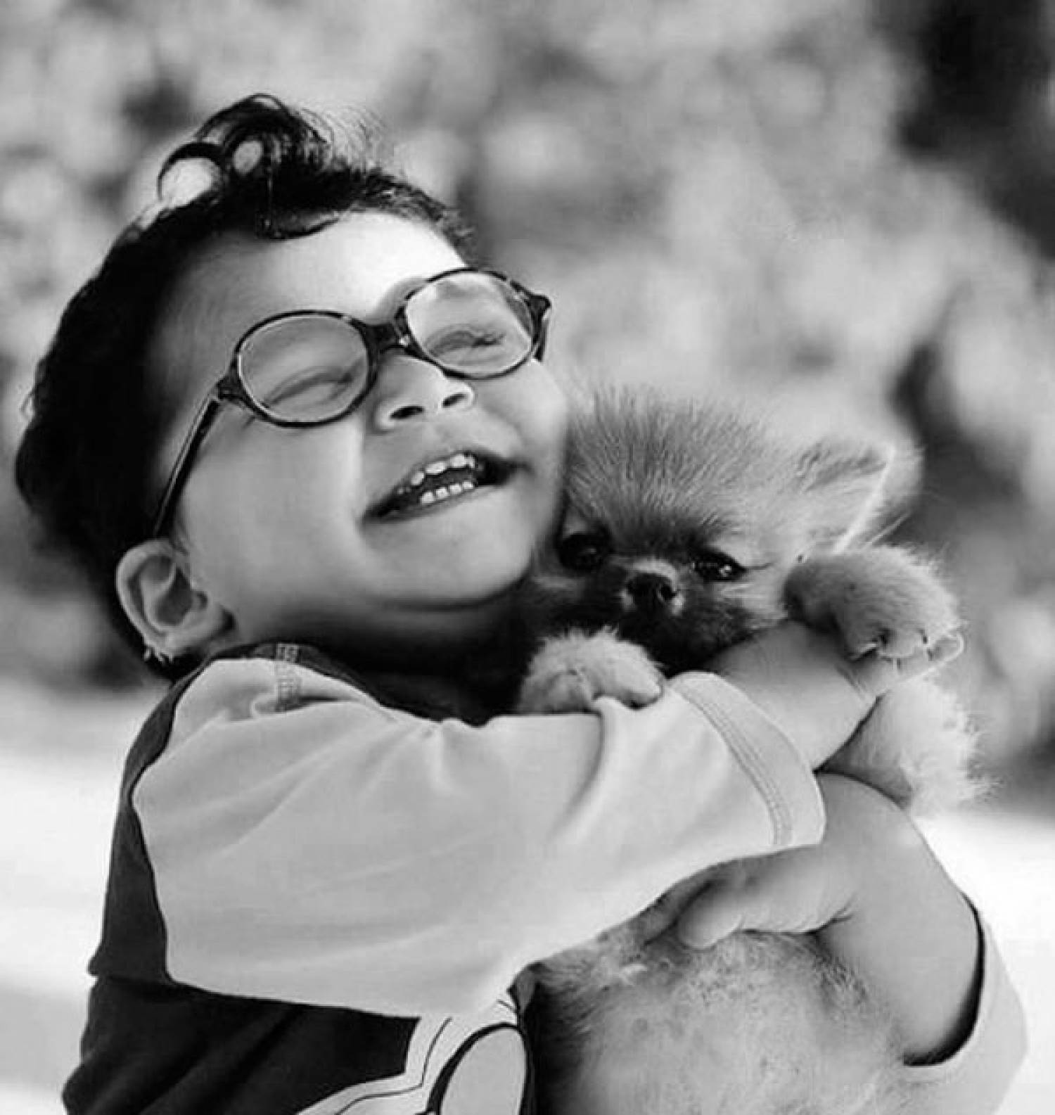 cats_dogs_and_children_12