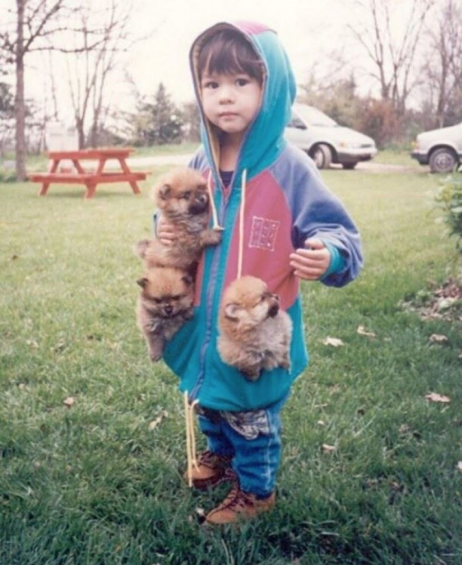 cats_dogs_and_children_20