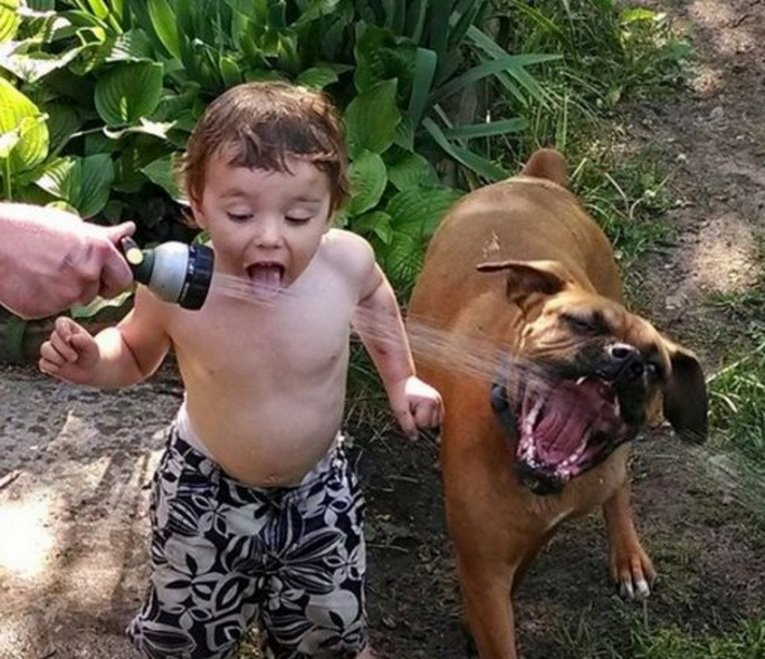 cats_dogs_and_children_28