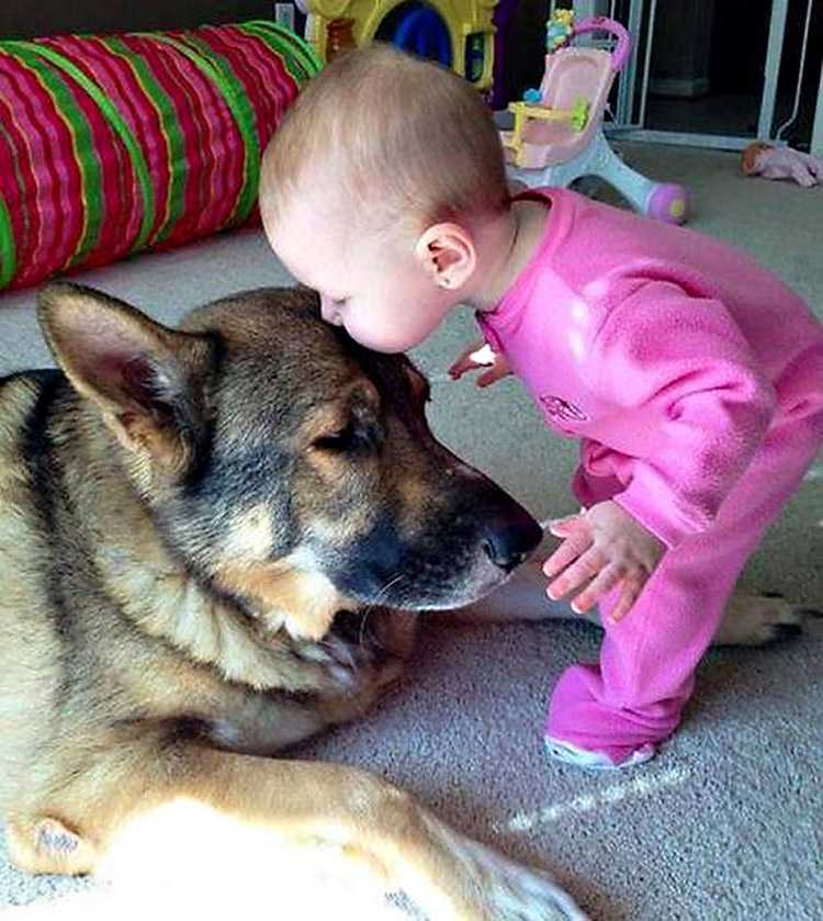 cats_dogs_and_children_4