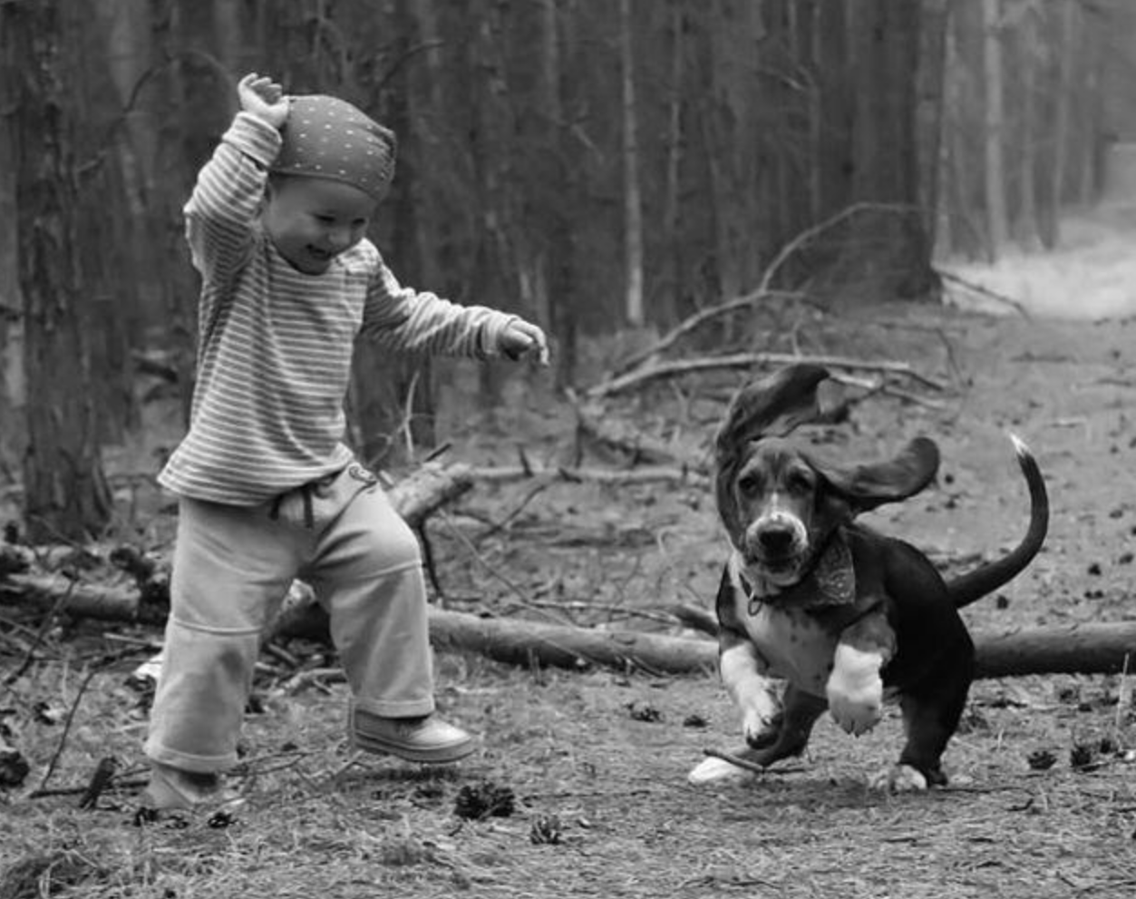 cats_dogs_and_children_9