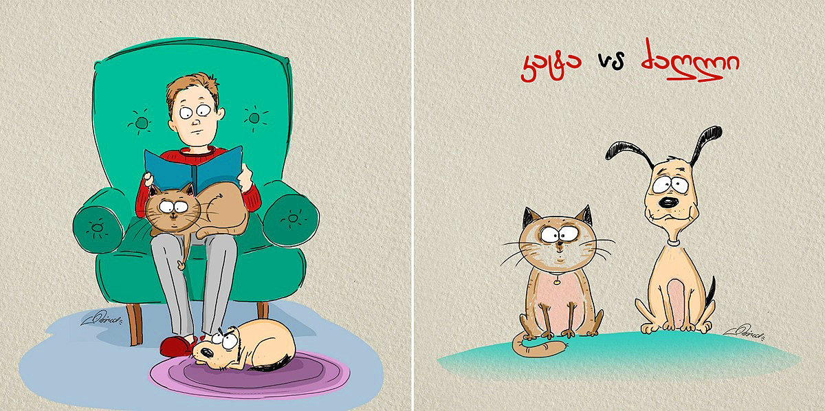 dog-vs-cat-funny-pictures-by-russian-illustrator-bird-born-1
