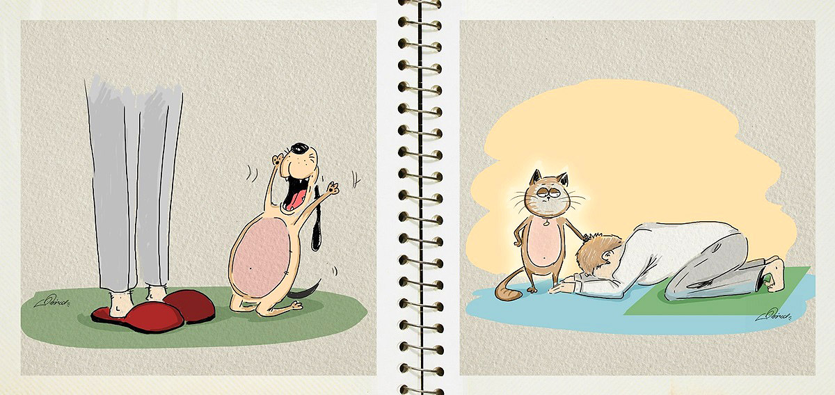 dog-vs-cat-funny-pictures-by-russian-illustrator-bird-born-4