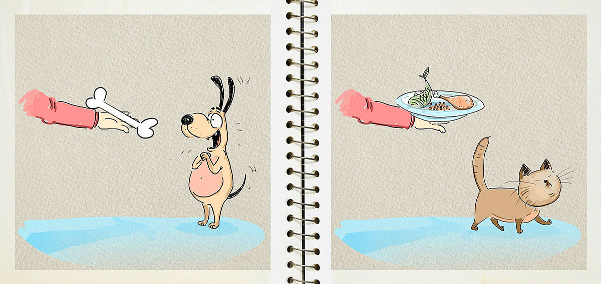 dog-vs-cat-funny-pictures-by-russian-illustrator-bird-born-5