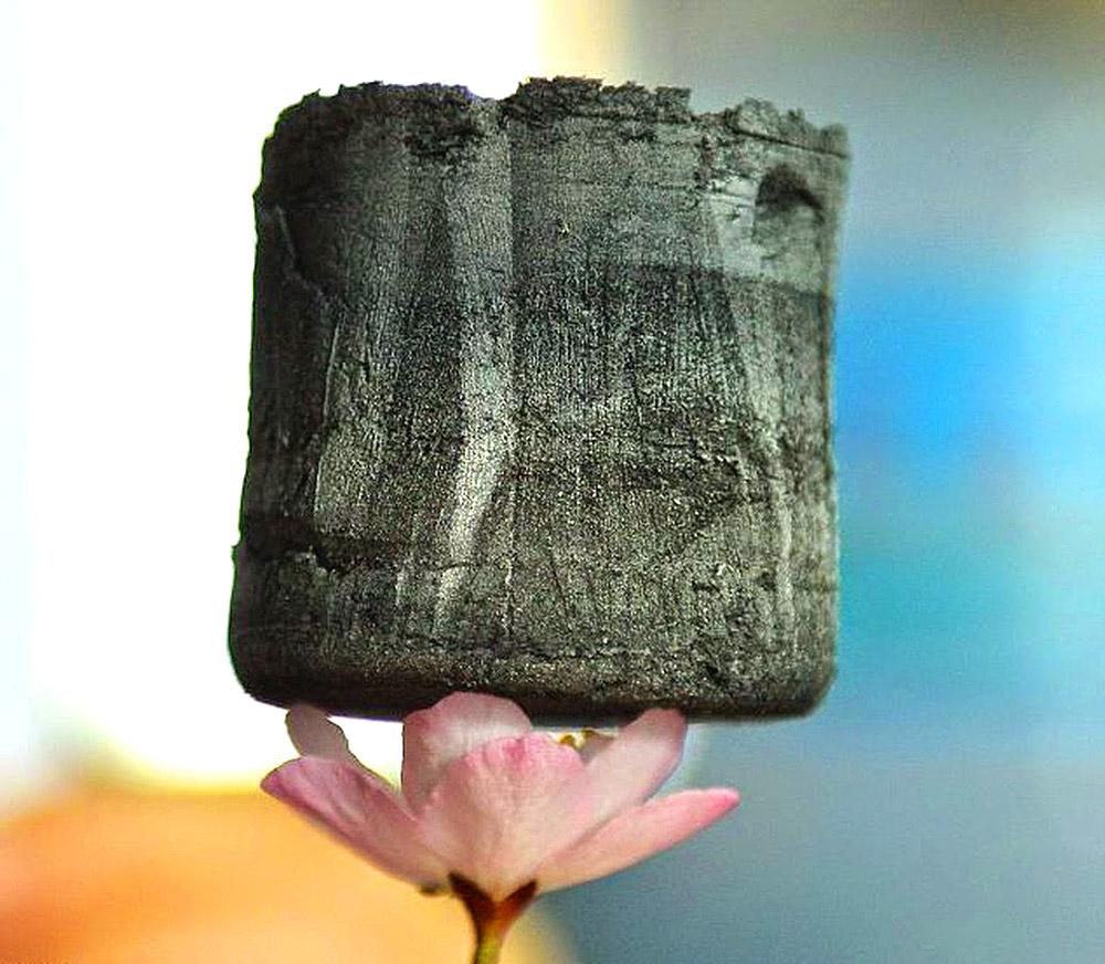 გრაფენის აეროგელი - ყველაზე მსუბუქი მატერია დედამიწაზე