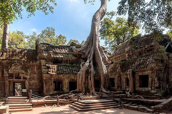 ტა-პრომის ნანგრევები, ტაძარი კამბოჯაში: ბუნების დამანგრეველი ძალა